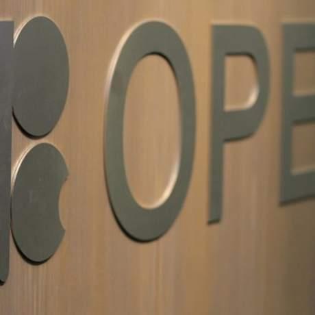 Страны ОПЕК в мае увеличили добычу нефти