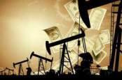 Аналитики ожидают в ближайшее время падение нефти ниже 50$