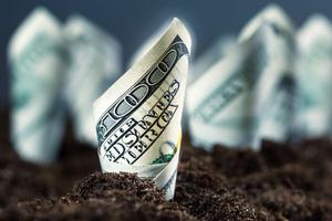 «Ястребиная» риторика ФРС укрепила доллар