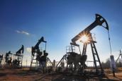 Цены на нефть снизились из-за роста буровой активности в США